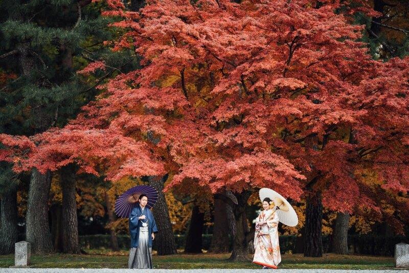 Motif kyoto by TAKAMIBRIDAL_トップ画像1