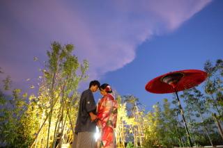 8月までの平日撮影 トワイライト&ナイトライトアップ撮影✨お茶室スタジオ蒼葉庵にて貸切撮影!
