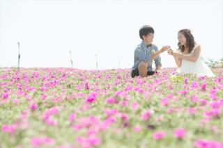 334791_愛知_NEW | PICK UPフォト