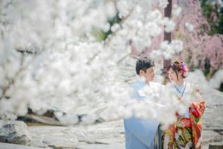 171276_愛知_岡崎公園ロケーション【桜】