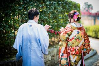 171267_愛知_岡崎公園ロケーション【桜】