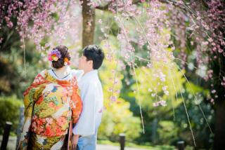 171271_愛知_岡崎公園ロケーション【桜】