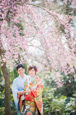 171270_愛知_岡崎公園ロケーション【桜】