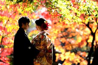 48499_東京_和装庭園ロケーション(紅葉)