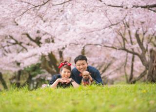 149293_埼玉_桜&紅葉