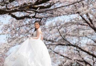 183145_埼玉_桜&紅葉