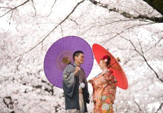 149297_埼玉_桜&紅葉