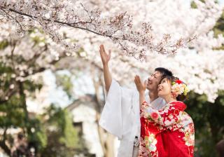 149291_埼玉_桜&紅葉