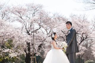 183148_埼玉_和装ロケ 桜&紅葉