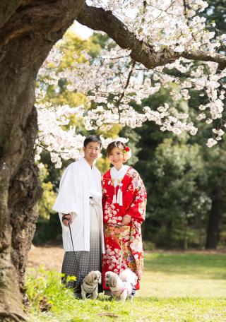 149299_埼玉_桜&紅葉
