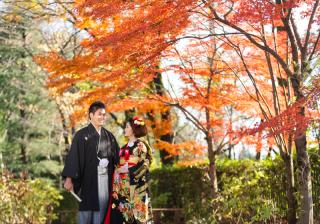 149282_埼玉_桜&紅葉