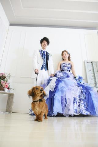 172586_徳島_和装 洋装 ロケ スタジオ