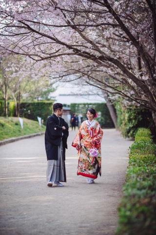 247791_香川_ロケーション 桜・梅