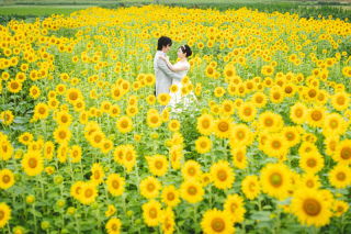 308187_徳島_花のロケーション撮影