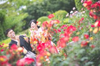 221955_徳島_花のロケーション撮影