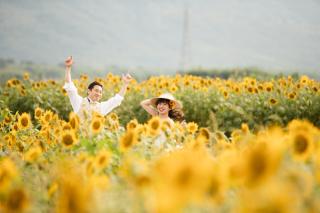 308198_徳島_花のロケーション撮影