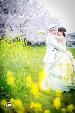 60684_徳島_季節の花のロケーション撮影