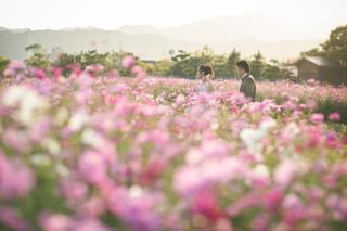 308200_徳島_花のロケーション撮影