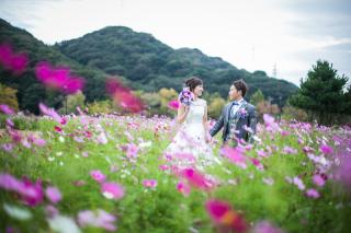 261025_徳島_花のロケーション撮影