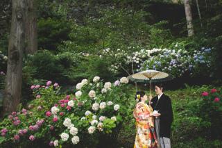 308186_徳島_花のロケーション撮影