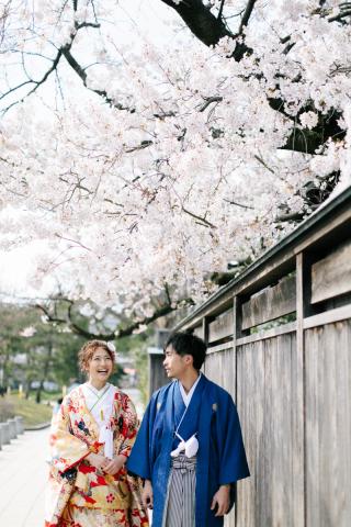 290880_新潟_桜