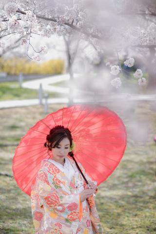 267037_新潟_ロケーションフォト【春・夏】1