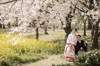 267022_新潟_ロケーションフォト【春・夏】1