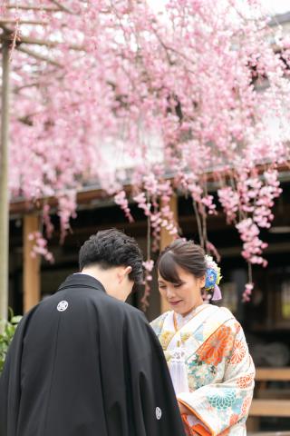 267033_新潟_ロケーションフォト【春・夏】1