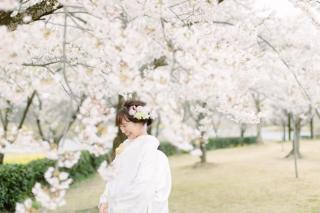 290892_新潟_桜
