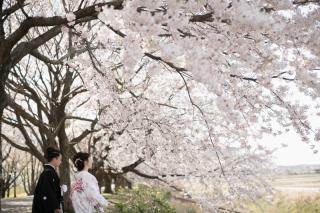 267020_新潟_ロケーションフォト【春・夏】1