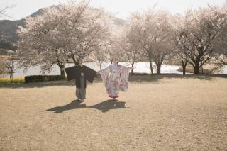 267028_新潟_ロケーションフォト【春・夏】1
