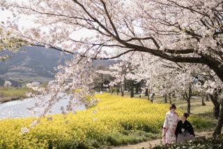 267023_新潟_ロケーションフォト【春・夏】1