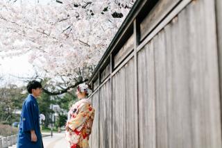 290885_新潟_桜