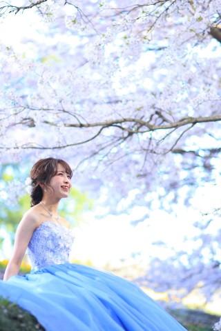 264074_鳥取_カラードレス