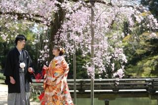 360314_岡山_梅・桜ロケーション
