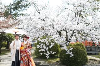 185082_三重_Location Spring