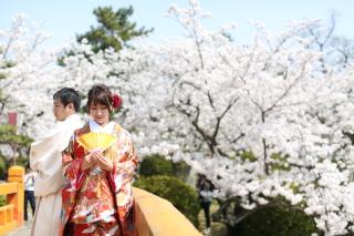 185099_三重_Location Spring