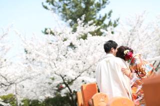 185091_三重_Location Spring