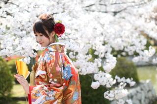 185085_三重_Location Spring