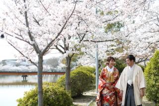 185086_三重_Location Spring