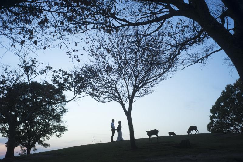 ivory wedding OSAKA