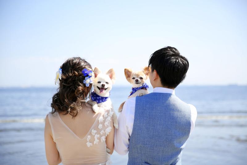 Libre Wedding 〜お二人らしさをとことんカタチに〜_トップ画像5