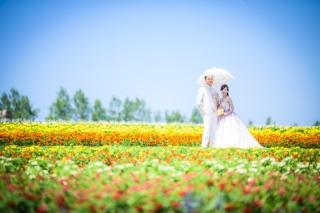 170347_北海道_【Summer-夏】7.8月富良野ラベンダー&お花畑!!!