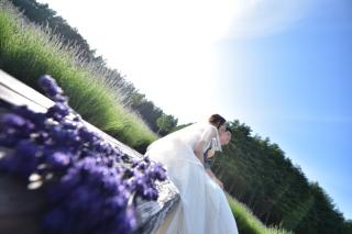 170352_北海道_【Summer-夏】7.8月富良野ラベンダー&お花畑!!!