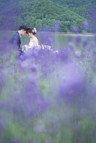 170348_北海道_【Summer-夏】7.8月富良野ラベンダー&お花畑!!!