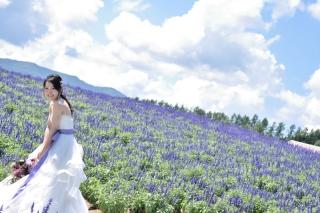 148209_北海道_【Summer-夏】7.8月富良野ラベンダー&お花畑!!!