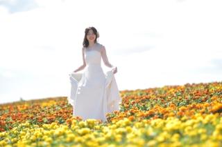 148781_北海道_【Summer-夏】7.8月富良野ラベンダー&お花畑!!!
