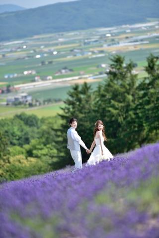170351_北海道_【Summer-夏】7.8月富良野ラベンダー&お花畑!!!