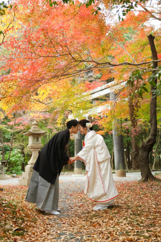 278206_京都_京都×ロケーション(桜)①