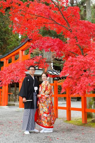 278172_京都_京都×ロケーション(桜)①